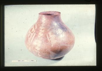 NandrisEpson189.tif