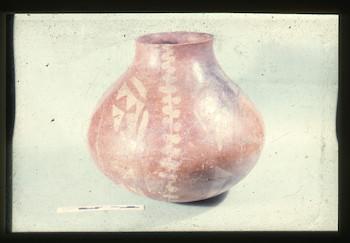 NandrisEpson190.tif